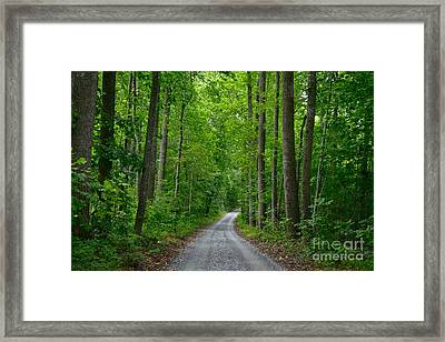 The Road To Thomas Jefferson's House Framed Print