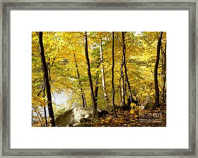 Along The Way Framed Print by Sue OConnor