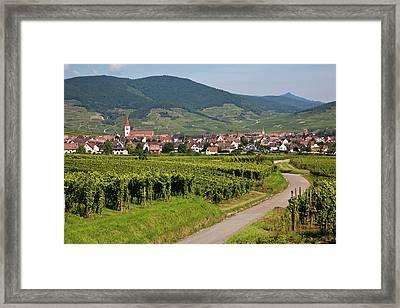 Alsace, France. Framed Print by Buena Vista Images