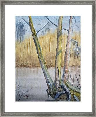 Altamaha River Three Trees Framed Print by Spencer  Joyner