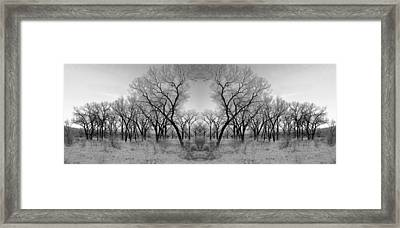 Altered Series - Bare Double Framed Print