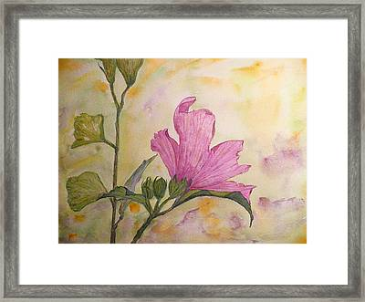 Althea Framed Print by Stella Schaefer