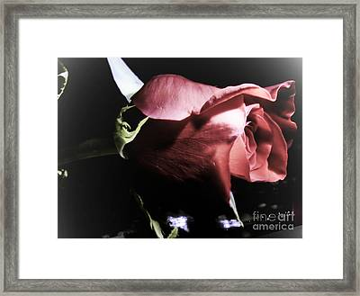 Framed Print featuring the photograph Always And Forever 2 by Janie Johnson