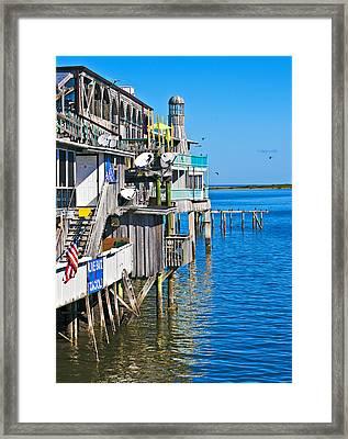 Always Blue - Cedar Key Framed Print