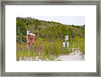 Always Ready Framed Print by Betsy Knapp