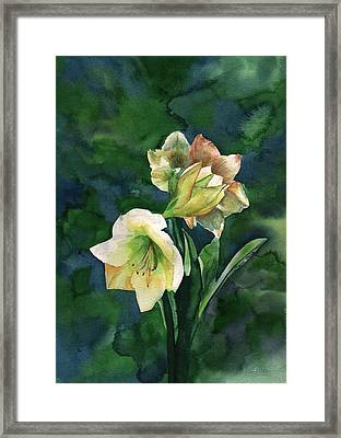 Framed Print featuring the painting Amaryllis by Sharon Mick