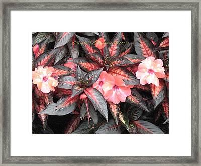 Amazing Hues Of Nature Framed Print by Sonali Gangane