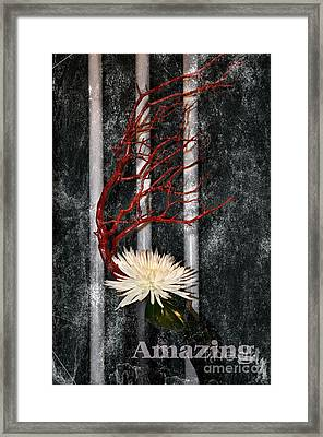 Framed Print featuring the photograph Amazing by Tamera James