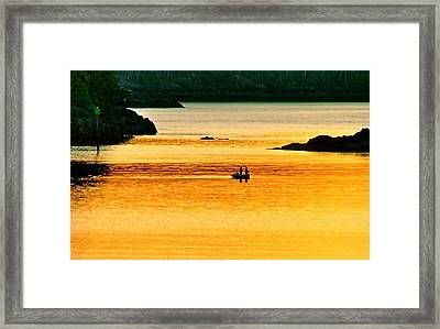 Amber Angling Framed Print by Brent Sisson