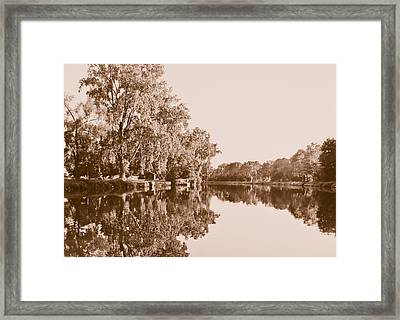 Amber Reflection Framed Print by Sara Frank