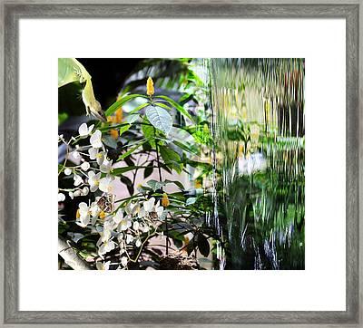 Ambiance Framed Print by Elizabeth Hart