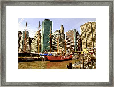 Framed Print featuring the photograph Ambrose by Alice Gipson