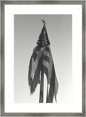 America...... Framed Print by Artist Orange