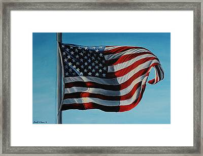 America The Beautiful Framed Print by Daniel W Green