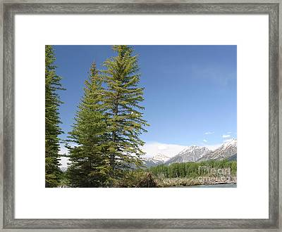 Framed Print featuring the photograph America The Beautiful by Living Color Photography Lorraine Lynch