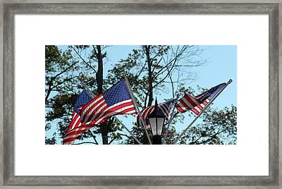American Beauty Framed Print by James Hammen