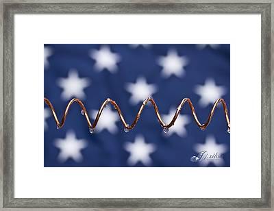 American Copper Framed Print by Joseph Silva