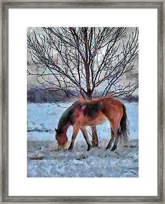 American Paint In Winter Framed Print by Jeff Kolker