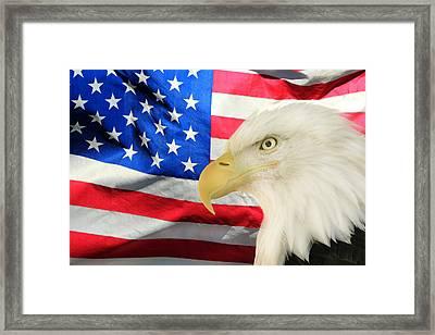 American Framed Print by Shane Bechler