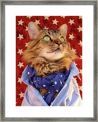 Americana Cat Framed Print by Joann Biondi