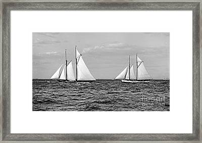 America's Cup Contenders Idler And Hildegarde 1901 Bw Framed Print by Padre Art