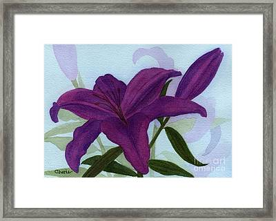 Amethyst Lily Framed Print by Vikki Wicks