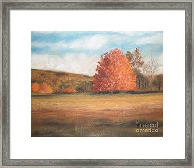 Amid The Tranquil Presence Of Change Framed Print by Lisa Urankar