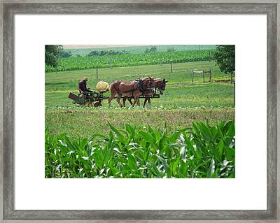 Amish At Work Framed Print by Dottie Gillespie
