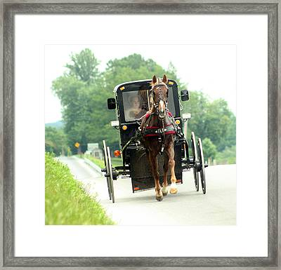 Amish Buggy On The Road Framed Print by Emanuel Tanjala