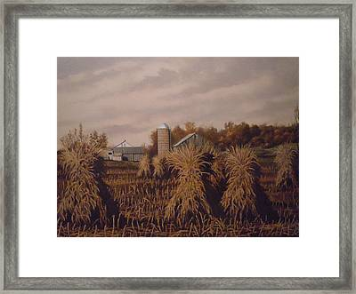 Amish Farm In Autumn Framed Print by James Guentner