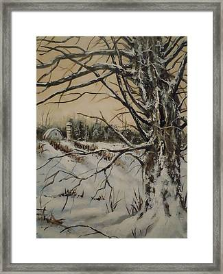 Amish Farm In Winter Framed Print by James Guentner