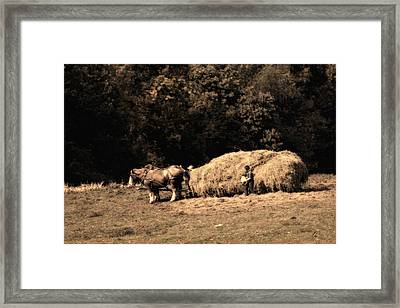 Amish Hay Wagon Framed Print by Tom Mc Nemar