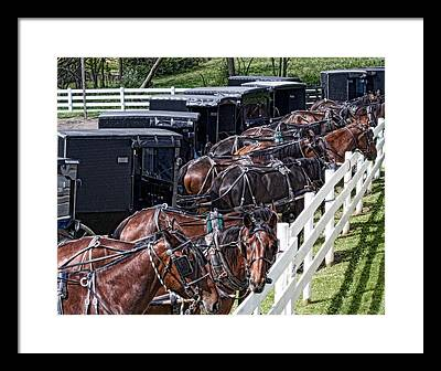 Amish Buggy Framed Prints