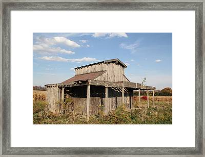 Amish Shed #3 Framed Print by Donna Bosela