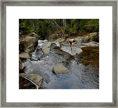Among The Brook  Framed Print