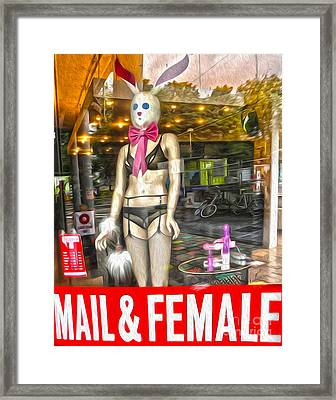 Amsterdam Bunny In Lingerie  Framed Print by Gregory Dyer