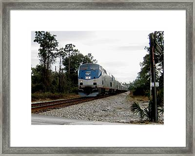 Amtrak Silver Meteor At Lake Woodruff Florida Framed Print
