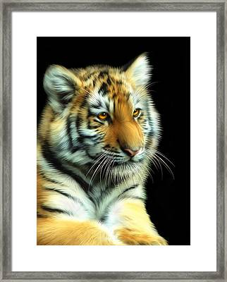 Amur Tiger Cub Framed Print by Julie L Hoddinott