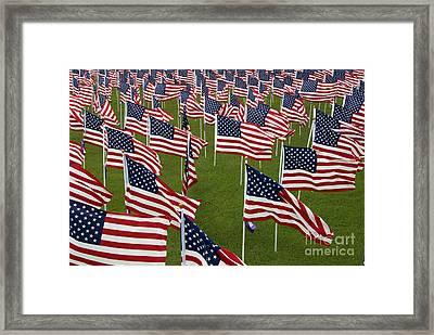 An Abundance Of American Flags Framed Print