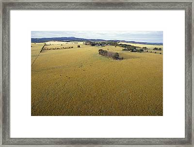 An Aerial View Of Farmland Framed Print by Jason Edwards