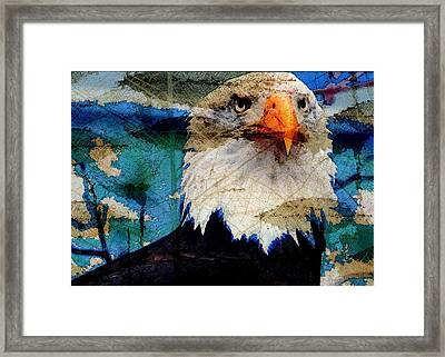 Framed Print featuring the digital art American Bald Eagle by Carrie OBrien Sibley