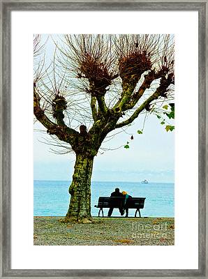 An Autumn Affair Framed Print by Syed Aqueel