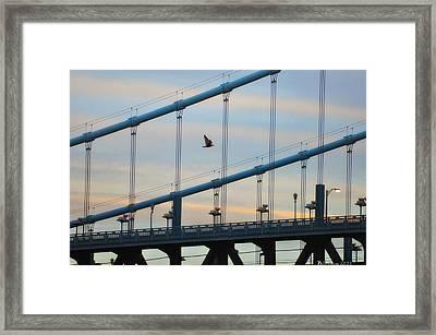An Early Morning Flight Framed Print