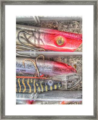 An Hdr Of Fishing Lures Framed Print by Jennifer Holcombe