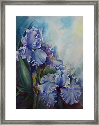 An Iris For My Love Framed Print