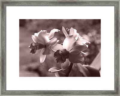 Framed Print featuring the photograph An Orchid Dream by Kerri Ligatich
