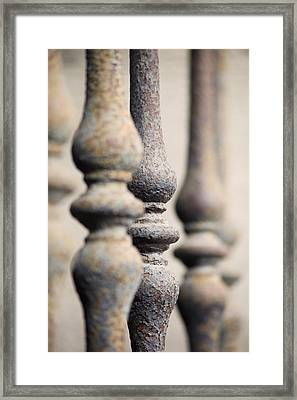 Ancient Spindles Framed Print by Terry Ellis