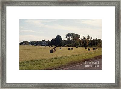 And A Crop In The Field Framed Print by Richard Amble