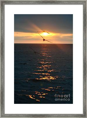 ...and At The End Of The Day... Framed Print by Valerie Rosen