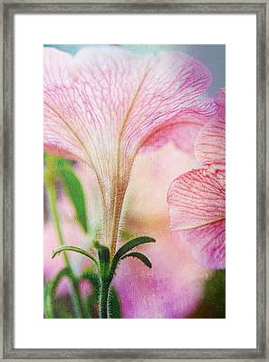 And It Was Good Framed Print by Bonnie Bruno